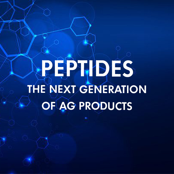 CRDF Peptide Seminar