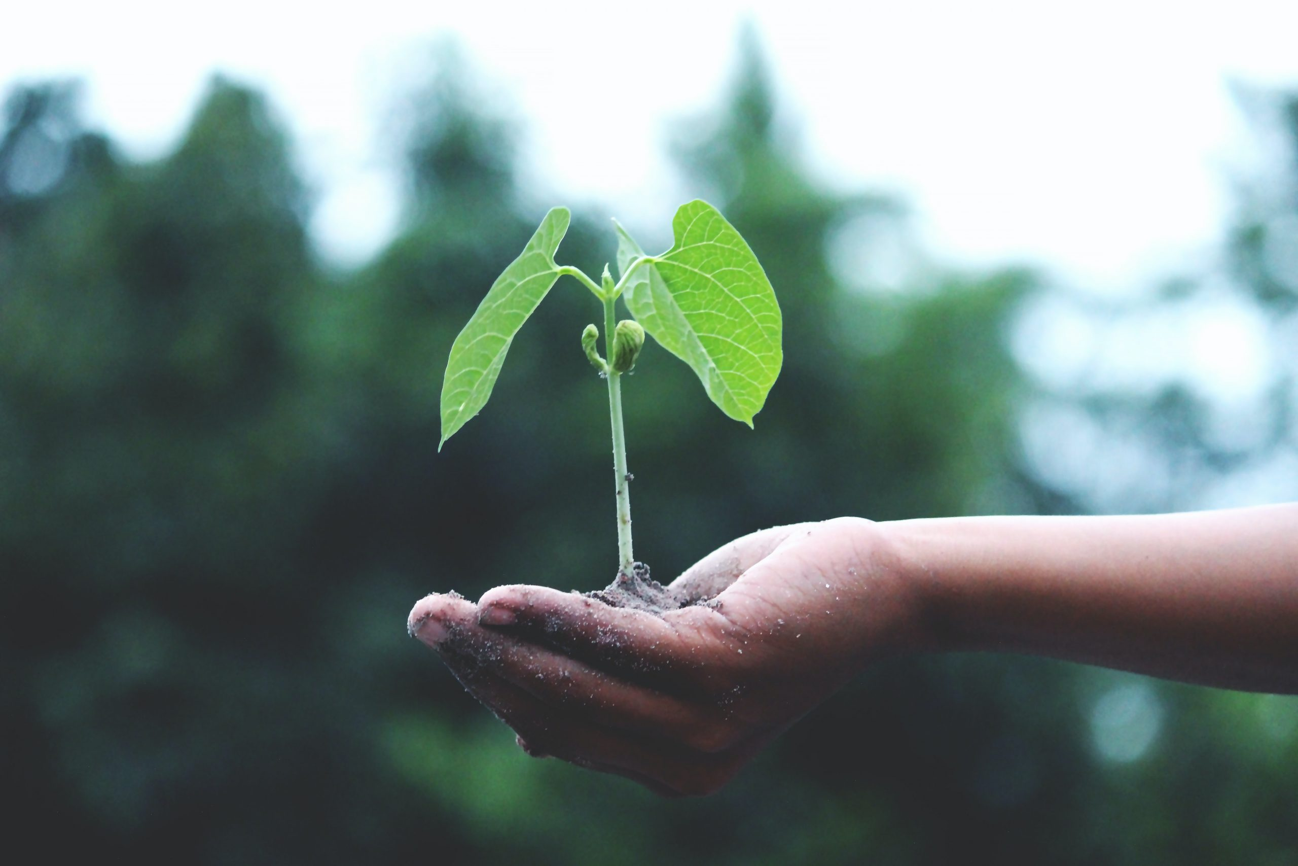 Preparing for a new era in agriculture
